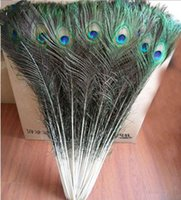 Wholesale Peacock Feather Wedding Decorations - Wholesale 100pcs lot 90-100cm 36-40 Inchesale beautiful natural peacock feathers eyes for DIY clothes decoration Wedding