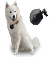 Digital Pet Collar Camera Video Audio Monitor JPG Recorder per cani Gatti Pet cucciolo (cane gatto) fotocamera di movimento