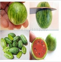 Wholesale Cucumber Fruit - 30pcs Vegetables and fruit seeds Mini watermelon Seeds Taste like cucumbers Bonsai plants Seeds for home & garden