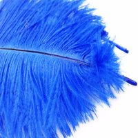 Wholesale feathers 25 inches online - Beautiful Royal Blue Ostrich Feather cm Inches Feathers Wedding Decoration High Quality Plume