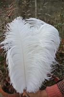 plumas de avestruz partido suministros al por mayor-Venta al por mayor-LIBRE ENVÍO 100pcs / lot 18-20 pulgadas pluma de avestruz blanco pluma para la boda centro de mesa suministros feative decoración