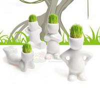 Wholesale Mini Bonsai Grass Man - 2015 hot sale 12 piece lot Plant Hair man Office Mini Plant Creative Gift Plant Bonsai Grass Doll Office Mini Plant