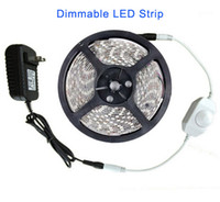 Wholesale Blue Led Strip Dimmer - Dimmable Flexible LED Strip Light 5m SMD 3528 Warm white Blue Rope 60leds m 300 LEDs Waterproof IP65 Strips + 2A Power Adapter + LED Dimmer