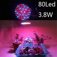 Wholesale Led Bulbs Plant Growth - E27 RED & BLUE 80 LEDs 3.8W Hydroponic Plant Grow Growth Light Bulb 220V led grow light