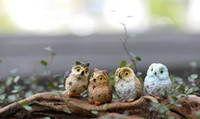 Wholesale Resin Birds Decorations - 20piece Micro Mini Fairy Garden Miniatures Figurines Resin Owl Birds Animal Figure Toys Home Decoration Ornament Free Shipping