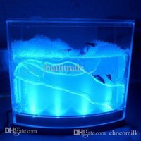 Wholesale Ant Farm Light - Wholesale-Free shipping wholesale ant farm with light with USB line  educational toy