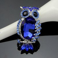Wholesale Turquoise Blue Clothes - Navy blue acrylic jewelry hollow owl brooch brooch clothing accessories, high-end clothing wholesale gift