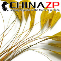 Wholesale Wholesale Coque Tail Feathers - NO.1 Supplier CHINAZP Crafts Factory 100pcs lot 10~15cm (4~6inch) Length Cheap Wholesale Dyed GOLDEN Stripped Eyelash Coque Tail Feathers