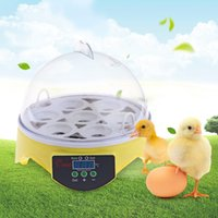 7PCS Eggs Automatic Poultry Mini incubadora de control de temperatura Automatic Poultry Bird Pet Chicken Hatcher Machine