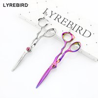 Wholesale professional pink hair scissors - Lyrebird HIGH CLASS 5.5 INCH Professional hair cutting scissors Silvery Rainbow Japan hair shears Pink Stone NEW
