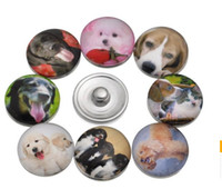 Wholesale Dog Buttons - NOOSA Amsterdam 18mm cat dog cute noosa Interchangeable Snap Buttons DIY Jewelry Accessory Ginger Snap Jewelry B416