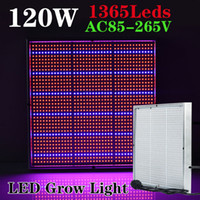 Wholesale Led Panel Grow Red - 1365pcs SMD 120W 1131Red + 234Blue LED Grow Lights Hydroponics Flower Fruit Vegetable Greenhouse LED Plant Lamp AC 85~265V Grow Panel Light