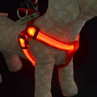 LED Dog Harness Collar Belt Pet Cat Dog Tether Colliers de sécurité Light Pet Supplies Battery Operated 6 couleurs 3 tailles