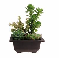 ingrosso balcone bonsai-Vasi per piante in plastica all'ingrosso RetroStyle Vaso da giardino Balcone Quadrato Fiore Bonsai Albero Fioriera Bonsai Vasi da allenamento Bacino Marrone scuro EMS gratuito