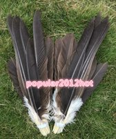 Wholesale cm precious natural male eagle feathers various decorative diy collect wedding decor