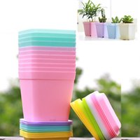 Wholesale 50pcs Hot Colorful Bonsai Planters Plastic Table Mini Succulents Plant Pots and Plate Gardening Vase Square Flower Pot