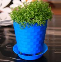 Wholesale Planter Plates - Bonsai Planters Latest Breathable Plastic Table Mini Succulents Plant Pots with Plate Gardening Vase Round Flower Pot Colorful