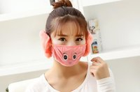 Wholesale Ear Muffs Face Mask - Wholesale-Explosive adult face embroidery cartoon masks in one warm ear protection masks