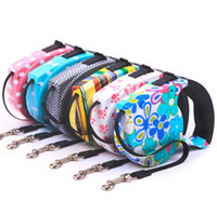 nylon kette hundehalsband großhandel-BEST Sale Pet Leash Einziehbare Katze Halsband Ausziehbare Leine Produkte Hundegeschirr Dele Pet Hundehalsketten 5M