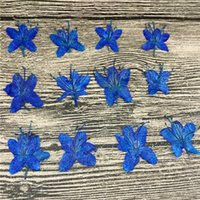 Wholesale Natural Art Materials - Sapphire Blue Natural Plant Dried Azaleas Flower For DIY Expoxy Material And Painting Art Crafts Wholesale 120Pcs