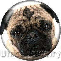 Wholesale Dog Buttons - AD1301147 18mm Snap On Charms for Bracelet Necklace Hot Sale DIY Findings Glass Snap Buttons Jewelry Dog Design noosa