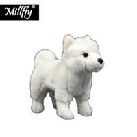 ingrosso giocattolo del cucciolo dei capretti-all'ingrosso Realistico crema pasticcera Shiba peluche realistico giapponese bianco Shiba Inu peluche cucciolo morbido cane giocattolo per bambini