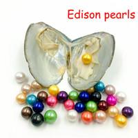 ingrosso perla naturale 12mm-2019 rotondo Edison Pearl Oyster 9-12mm 16 mix colore naturale perla regalo gioielli fai da te decorazioni sottovuoto all'ingrosso spedizione gratuita
