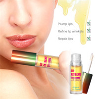 plantação de gengibre venda por atacado-NAGETA Melhora Plump Lips Essence Ferramenta Oil Care Ginger Peppermint Lip Máscara 6pcs Essence Lip Balm planta Lip Care