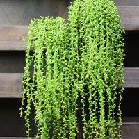 ingrosso piante artificiali da giardino pendenti-5fork 82cm Artificiale carnosità Amante Lacrima Succulente Perle Carnosa Vite Fiore Appeso Rattan Parete Giardino Decor Piante Fiore