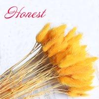 orange getrocknete blumen großhandel-50pcs getrocknet natürliche Blumenstrauß orange Farbe Samtgras bouquetsUraria picta Schwanz Gras Blumenstrauß