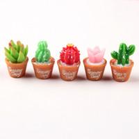 ingrosso piante per giardini fiabeschi-Simulazione Cactus Succulent Pot Miniature Bonsai Pianta Decor Fairy Garden Accessorio In resina Craft Materiale fai da te ZC0962