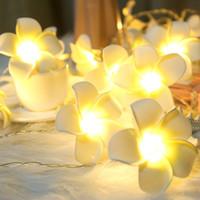ingrosso fiori a comando a batteria-Artificiale Plumeria Fiore LED String Lights Camera da letto Home Decor a pile Hawaii Fiori luci per la festa di nozze