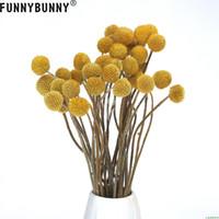 ramos amarillos al por mayor-FUNNYBUNNY 5PCS Craspedia seca Bolas de Billy amarillas Flores secas para la decoración del ramo de la boda Guirnalda de Navidad DIY