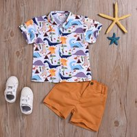 trajes de bebe playa al por mayor-Sweet Baby Boys Cute Cartoons Dinosaurios Tees y pantalones cortos 2 piezas Conjuntos Beach Holiday Wears Western Infant Fashion Kids Outfits