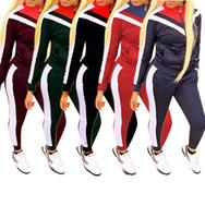 hoodies de animal de estimação venda por atacado-mulheres roupas mulheres moda fatos de treino senhoras manga longa com capuz e calça de moletom 2 peças de conjunto mulher
