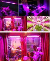 красные садовые цветы оптовых-5 шт. / лот 11 Красный 4blue содействие росту цветочных растений светодиодные лампы 110 В-220 В 25 Вт садоводство привело светать сад гидропоники зеленый