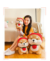 Wholesale dog cushions home resale online - 2019 hot products cute dog Akita dolls styles cute Shiba Inu children s doll pillow cushion plush toys