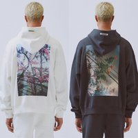 sudadera con capucha hombre monopatín al por mayor-19SS Essentials Fear Of Gold Flower and Bird BOXY Photo Sudadera con capucha de manga larga Hombres Mujeres Moda Street Skateboard hoodies HFLSWY310