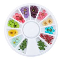 Wholesale new dried flowers resale online - NEW Mixed Natural Nail Dried Flower Diy D Pressed Blossom Flower Leaf Slider Sticker Polish Manicure Nail Art Decorations