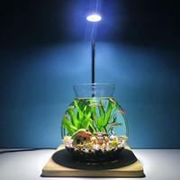 luz de coral regulable al por mayor-Acuario LED Pecera Luz de pecera 3W 5W 7W 9W Luz LED con tablero de madera SMD Lámpara de luz LED