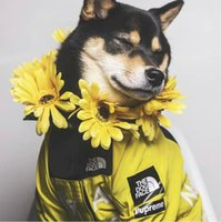 Wholesale yellow leash resale online - American flag street fashion windproof full rain north dogs leash Sup large pet clothes Pet dog clothes Sweater collars