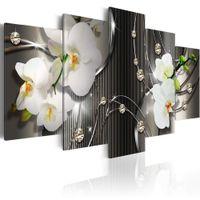 ingrosso orchidea-Senza cornice 5 Pezzi Farfalla Orchidea Fiore Stampa artistica Su Tela Dipinto Contemporaneo Immagine Parete Home Decor per Soggiorno Moda Floreale