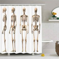 Wholesale Medical Human Skeleton - Buy Cheap Medical Human