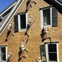 rote schwanzfedern großhandel-Halloween Scary Prop leuchtende hängende menschliches Skelett Outdoor Party Dekoration