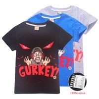 ingrosso visione di visione-GURKEY Funnel Vision FGTeeV Famiglia Gaming Team Bambini Tee shirts 4 Colori 6-14 t Ragazzi Ragazze Cotone T shirt Tees bambini vestiti firmati SS213