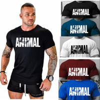 Wholesale shirt muscle xxl online – design 2019 new personality Fashion ANIMAL Letter Printed Round collar Men s Cotton Muscle Fitness Bodybuilding Men s T shirt Exercise