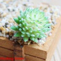 ingrosso bonsai succulenti-Pianta artificiale floreale succulente Mini PVC Chic Bonsai Home Decor Realistico giardino