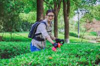 ferramentas de corte de sebes venda por atacado-Única lâmina 29.0AH 36 V Bateria de Li-ion Bateria Sem Fio Grama Powered Hedge Trimmer Garden Tools bateria recarregável