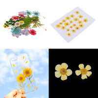 Wholesale dried flower cards for sale - Group buy Pack of Natural Dried Flower Real Flower Mixed For DIY Resin Ornament Craft Card Making Scrapbooking Embellishments