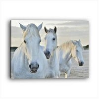 Wholesale free horses painting for sale - Group buy HOT Wholesales PC Frame Modern Style Horse Inkjet Decorative Painting